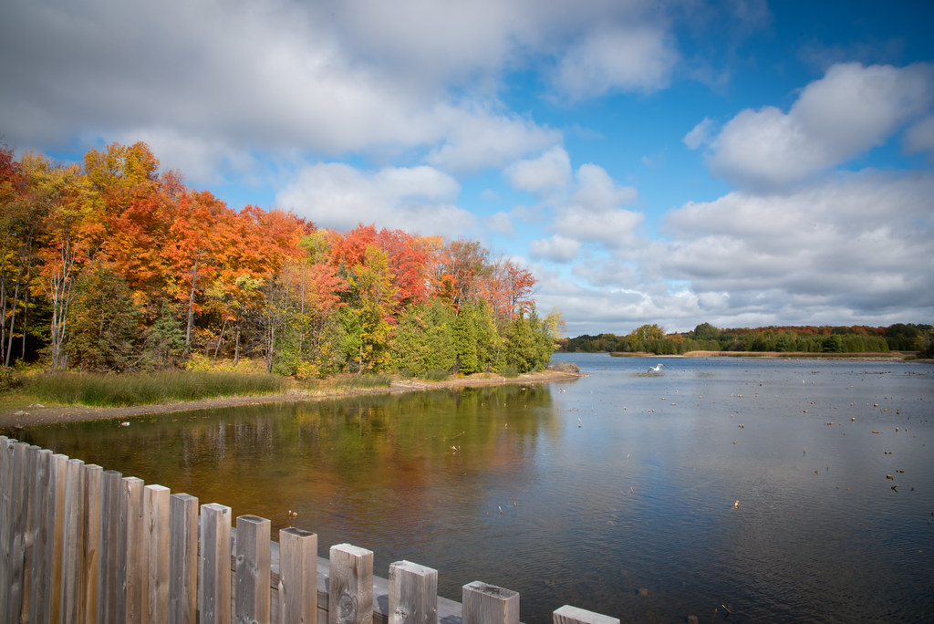 Image result for island lake conservation