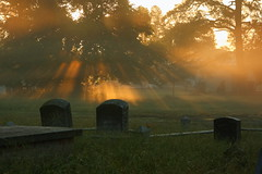 to raise the dead (duckydoo) Tags: graves sunlight sunbeams morning fog light chincoteague virginia cemetery graveyard