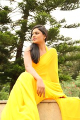 South Actress Deepika Das Hot in Yellow Sari Photos Set-2 (3)