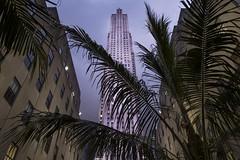 Rockefeller Center  #manhattan #newyork #nuevayork #rockefeller #city #ciudad #night #skyscrapper #albertosen #freelance (Alberto Sen (www.albertosen.es)) Tags: manhattan albertosen freelance nuevayork night city rockefeller newyork skyscrapper ciudadnuevayorknewyork2016septiembreviaje