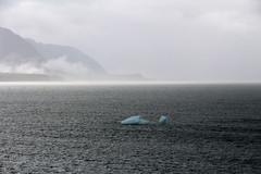IMG_0437 (EliaZane) Tags: alaska glacier mendenhall sea ocean ice blue cruise
