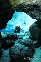 IMG_6902 (2) (SantaFeSandy) Tags: ballroom diving divers derek covington rebreather can cavern cave canon camera catfish sandrakosterphotography sandrakosterphotographycom sandykoster sandy sandra santafesandysandrakosterphotographycom sandrakoster swimmers scuba springs colors caves