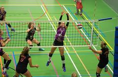 1B260750 (roel.ubels) Tags: vv utrecht eurosped galgewaard volleybal volleyball 18 finale nationale beker