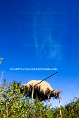 Farm-houseHaloween-clouds-copy (prem swaroop) Tags: aptourism artist araku easterghats prem vizagcityguide visakhapatnam haybarrack clouds scenery bluesky clearsky hay hut village church hilltop