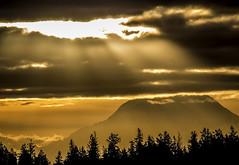 rainier sunlight 2 (David Montesino) Tags: longbranchwashington keypeninsula mountrainier autumn tacoma washington usa