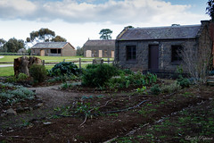 (Laszlo Papinot) Tags: werribeepark farm cottage house bulding garden park werribee