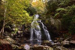 Spruce Flat Falls (MJMPhoto II) Tags: greatsmokymountains tennessee waterfall nature