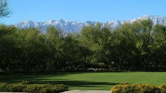 November 30, 2016 (3) (gaymay) Tags: california desert gay love riversidecounty coachellavalley sunnylandsestate ranchomirage