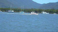 DSCN0225 (rojam1000) Tags: things see while water carting from cairns harbour