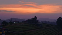 Ooty Sunset (code_martial) Tags: d3300 1685mmf3556gvr ooty2016 ootacamund udhagamandalam roadtrip