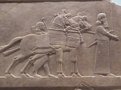 Horses (Aidan McRae Thomson) Tags: nineveh relief britishmuseum london assyrian sculpture mesopotamia ancient