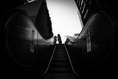 Escalator Ear (tomabenz) Tags: shadow sony a7rm2 urban noiretblanc paris fisheye olympiades escalator bw streetview black white europe monochrome street photography blackandwhite sonya7rm2 streetphotography