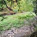 0737 Buttermilk Falls State Park