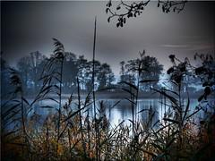 November  mood at the lake Poenitz (Ostseetroll) Tags: deu deutschland geo:lat=5403779220 geo:lon=1069995980 geotagged pönitzamsee scharbeutz schleswigholstein herbst autumn stimmung mood