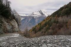 le Chavalard (bulbocode909) Tags: valais suisse saxon forêtsdeschamps forêts arbres montagnes nature jaune vert mélèzes sapins automne neige lechavalard