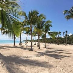 Just a little bit of paradise. #triptime #plantoday!!! #destinationfuntraveljenwarnow (jenstalder) Tags: ifttt instagram tony horton beachbody shaun t fitness p90x insanity health fun love