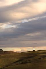 Toscana Landscape (Gure Elia) Tags: landscape vertical morning early toscana italy italia paisaje outdoor samyang135f2 november canoneos5dmarkii