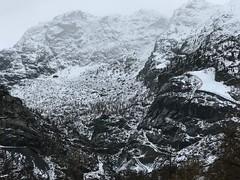 No Summer (FlavioSarescia) Tags: winter snow mountains iphone switzerland zermatt blackandwhite monochrome travel wander wanderlust fog foggy white black forest ski home