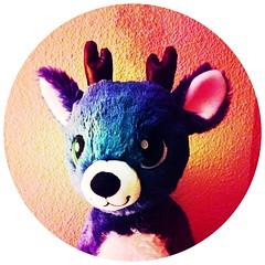 Jingle Jingle! (Q. Q. Kachoo) Tags: hipstamatic aatto og berrypop