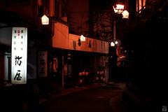 /Onsen street (yasu19_67) Tags:  onsen nightview neon street alley atmosphere photooftheday filmlook filmlike digitaleffects sony7ilce7 supertakumar55mmf18 55mm tottori japan xequals xequalscolornegativefilms