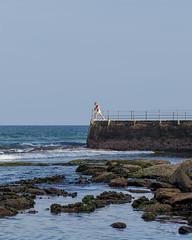 (J Trav) Tags: bondi bondiicebergspool bondibeach newsouthwales australia man pool beach ocean blue
