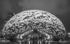 First snow in Chicago!!! Our Bean looks like Amanita today :) (Natasha J Photography) Tags: first snow chicago our bean looks like amanita today thebean millenniumpark