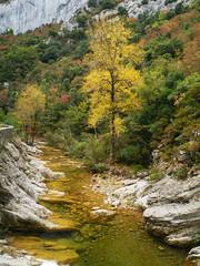 Gorge de Galamus (Niall Corbet) Tags: france occitanie languedoc roussillon aude gorgedegalamus gorge canyon limestone river autumn