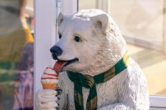 Ice Cream Bear (Nomis.) Tags: bear ice canon eos rebel cream polarbear icecream polar lightroom 700d canon700d canoneos700d t5i canonrebelt5i rebelt5i sk201506288215editlr sk201506288215