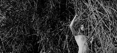热爱 - HONEVO (Honevo) Tags: male forest photo sensual connection ecosystem honevo