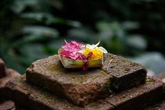 Munduk, Bali (stefan_fotos) Tags: bali indonesia asia asien urlaub hq indonesien munduk