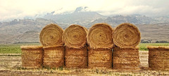 BALED OUT (Irene2727) Tags: mountains nature clouds landscape ngc npc hay bales balesofhay mountscape