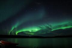 Auroras (MajorTom_) Tags: trees lake green finland stars lights aurora northern borealis