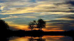 Sunset (sylvette.T) Tags: trees sunset sky reflection tree water clouds landscape pond 2015 lorrainefrance nikond5100 objectifnikon18105 santepôle