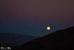 Mosaic Canyon (Raf Debruyne) Tags: california nightphotography usa moon night canon landscape eos 5d deathvalley deathvalleynationalpark mk3 mark3 24105mm 24105mmf4 canonef24105mmf4lusm canon24105mmf4 5dmkiii 5dmarkiii canoneos5dmk3 rafdebruyne debruynerafphotography debruyneraf canoneos5dmkill