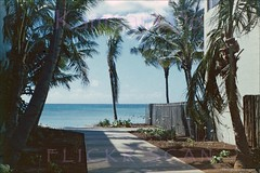Edgewater Cottages Waikiki 1949 (Kamaaina56) Tags: 1940s waikiki hawaii slide edgewater reef