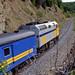 Via Rail Canada # 6430 diesel locomotive (Gascons, Quebec, Canada) (23 or 24 July 1989) 2