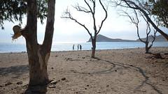 Sombrero (Panasonikon) Tags: sombrero hut tree meer sea spain spanien gegenlicht schatten nikond5100 sigma1020 strand sommer summer panasonikon küste baum weitwinkel