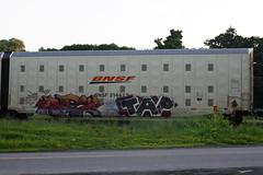 Rex? Tap (BombTrains) Tags: road seattle railroad art train bench graffiti paint tag graf minneapolis rail spray graff tap harp rex freight bnsf swarm autorack fr8 asic reser noheart benching dekore 314423