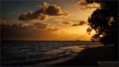 Mood of Plum (Passie13(Ines van Megen-Thijssen)) Tags: ocean sunset nature canon zonsondergang meer mood sonnenuntergang natur plum natuur southpacific nouvellecaldonie newcaledonia tamron2470 nieuwcaledonie inesvanmegen inesvanmegenthijssen