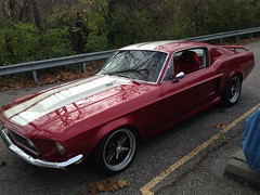 "1968 Mustang • <a style=""font-size:0.8em;"" href=""http://www.flickr.com/photos/85572005@N00/23359793820/"" target=""_blank"">View on Flickr</a>"