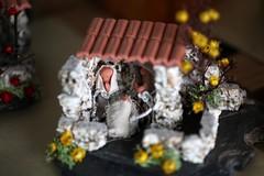 IMG_3736-face (camaradecoimbra) Tags: portugal natal navidades merrychristmas christmastime painatal sagradafamlia rainhasanta acadmica joyeuxnoel meninojesus queimadasfitas briosa bolasdenatal mercadodpedrov prespiosartesanais artesosdecoimbra burningribbons