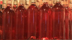 New brew ! (SamSpade...) Tags: red wine delicious organic currants aperitif 580 redcurrant 6374 151213