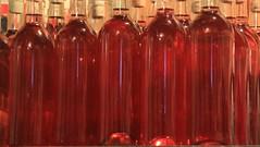 New brew ! (SamSpade...) Tags: red wine delicious organic currants aperitif 580 redcurrant 6374 151213