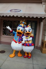 donald & daisy duck (alienalice) Tags: ariel goofy alice woody tinkerbell mickeymouse pluto cinderella donaldduck sulley disneyprincess chipndale daisyduck hongkongdisneyland hkdl lotso disneypaintthenight