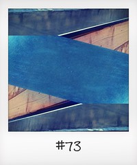 """#DailyPolaroid of 10-12-15 #73 • <a style=""""font-size:0.8em;"""" href=""""http://www.flickr.com/photos/47939785@N05/23783623619/"""" target=""""_blank"""">View on Flickr</a>"""