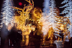 Christmas Lights In The Esplanadi Park (II) (pni) Tags: park christmas xmas light shadow people silhouette suomi finland person helsinki bokeh being multipleexposure human esplanade bubble helsingfors tripleexposure multiexposure skrubu pni esplanadinpuisto esplanadparken pekkanikrus
