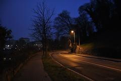 DSC_0221 (lorenzo.monti1988) Tags: foglie alberi torino nikon strada lampioni sera senza d3000