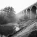 Reddish Vale - Viaduct