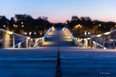 The line (plvision) Tags: paris bnf simonedebeauvoir matin morning sunrise line ligne pont bridge nikon photography photographie paris13
