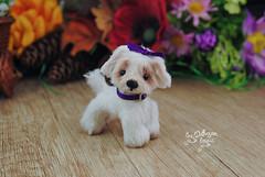 matilda01 (Zhanna Zolotina) Tags: teddy bear ooak dog miniature handmade blythe barbie tinydolhousetoyzz toyzz altair dollhouse puppenhaus